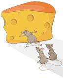 rat-cheese-vector-illustration-48858953